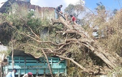 Laporan Situasi (Sitrep) Siklon Tropis Seroja di Wilayah GMIT #1; 1-10 April 2021