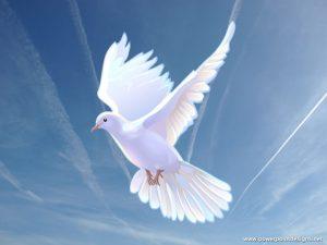 Roh Kudus Memberdayakan Untuk Bersaksi  Melalui Berbagai Bahasa
