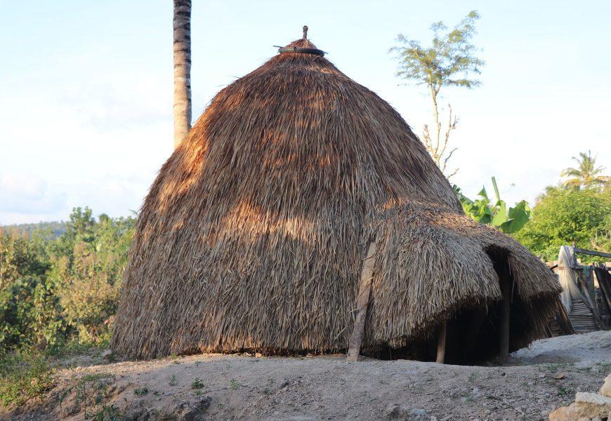 Modul Undang-Undang Desa